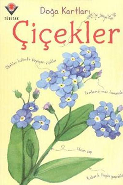 Doğa Kartları - Çiçekler